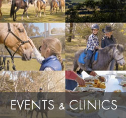 Events and Clinics