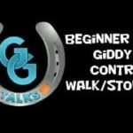 Beginner Rider: Giddy Up controls walk/stop/turn - horse riding lessons