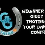 Beginner Rider: trotting on your own with control - horse riding lessons