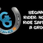 Beginner rider: How to ride safely in a group - horse riding lessons