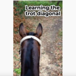 Upskill: Learning the trot diagonal - horse riding lessons