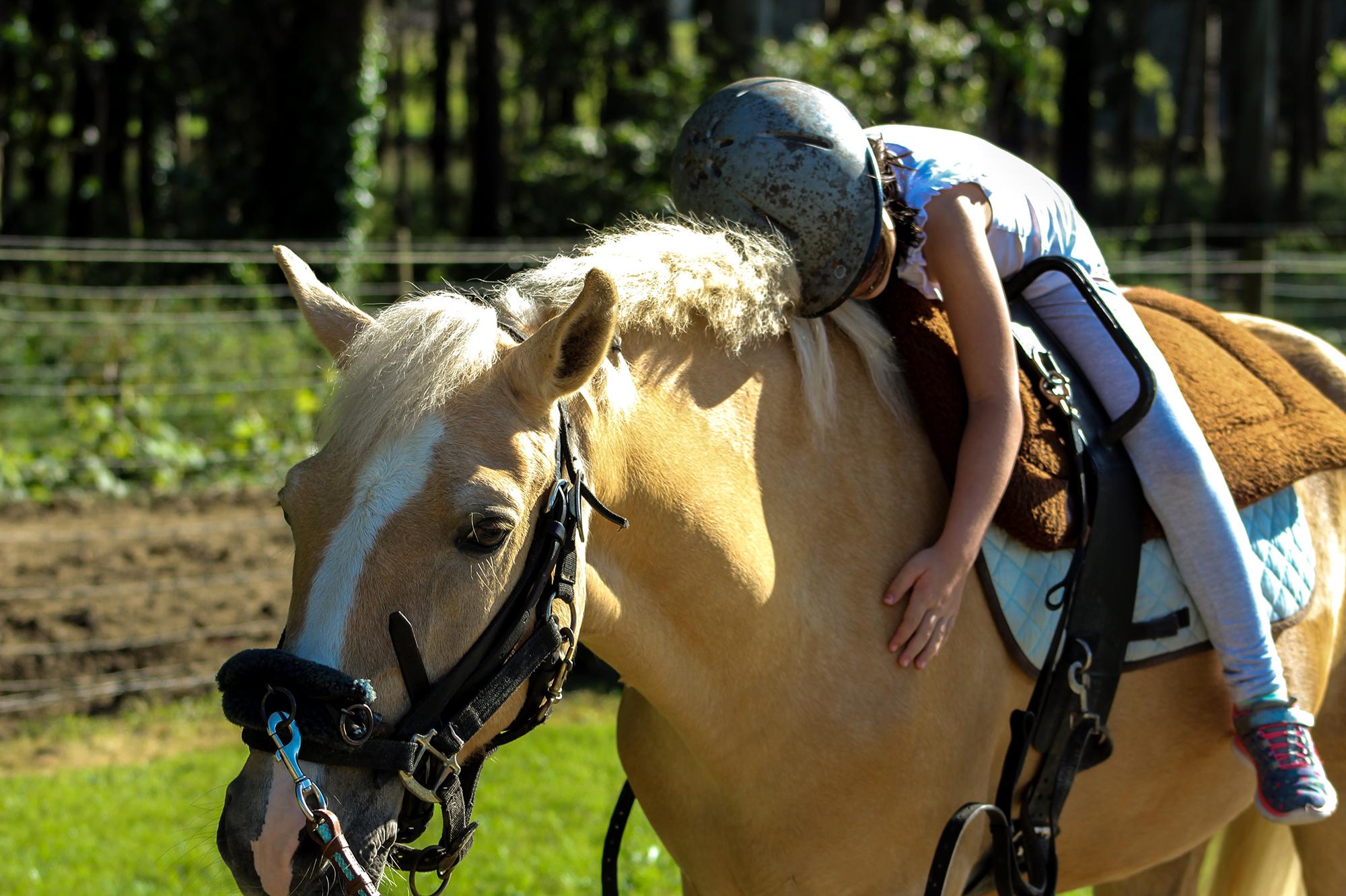 Child hugging horse