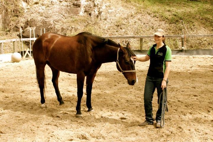 Deb and Horse demo