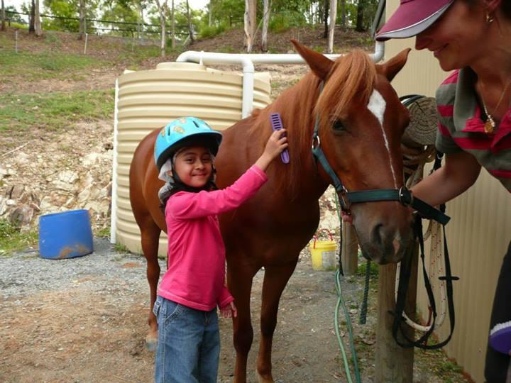 Horse Care 10
