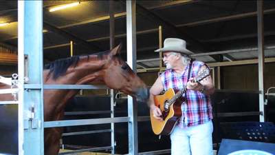 Playing guitar to a horse