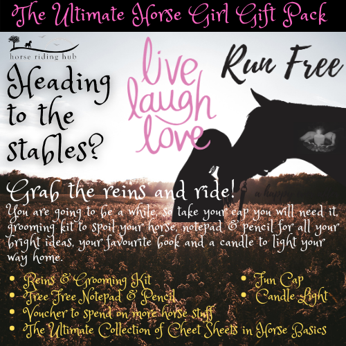 The Ultimate Horse Girl Gift Pack