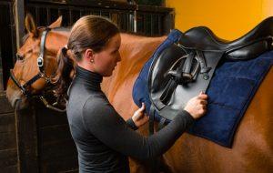 saddle-girth