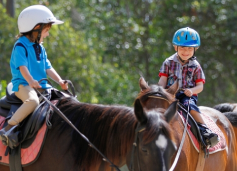 Learning to ride horses